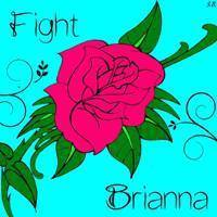 Fight_Bri